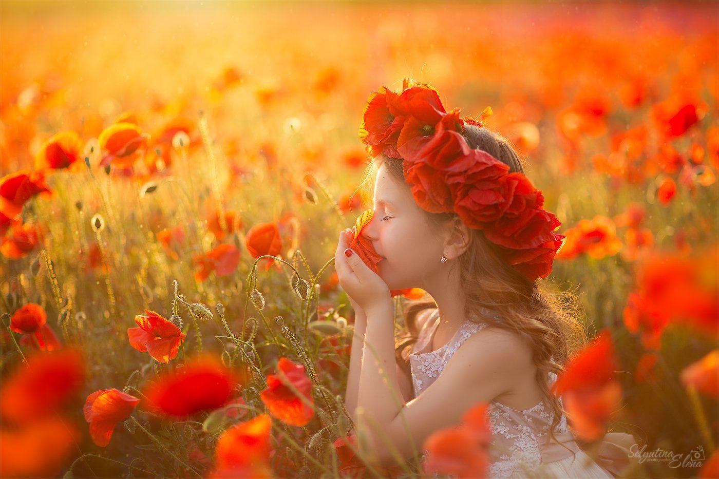 мак маки poppies poppies field маковое поле , Elena Selyutina