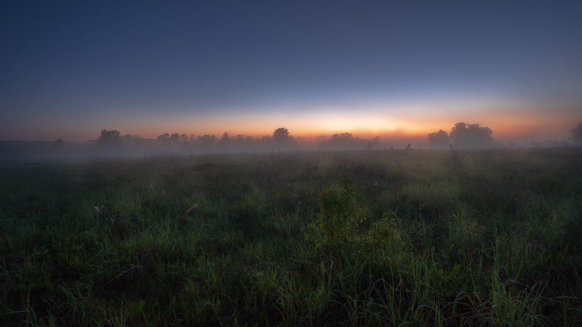 пейзаж, природа, поле, рассвет, ночь, туман, дубна, река, Андрей Чиж