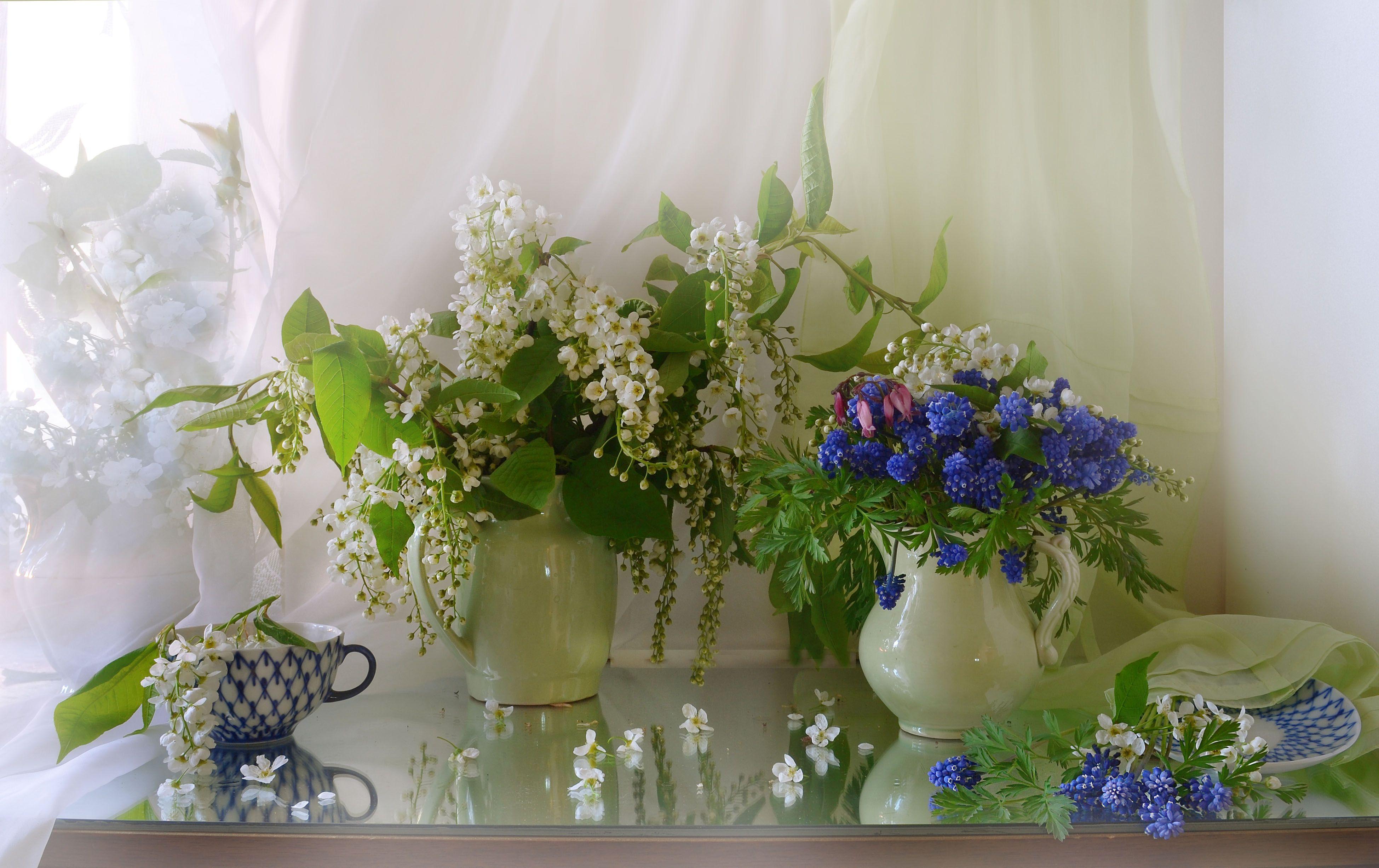 still life,натюрморт, весна, май, цветы, черёмуха, мускари, зеркало, отражение, фото натюрморт, последний день весны, Колова Валентина