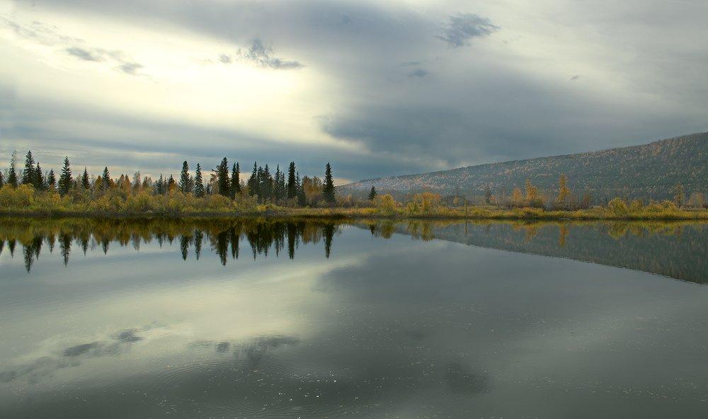сентябрь, утро, река, отражение, Николай Морский