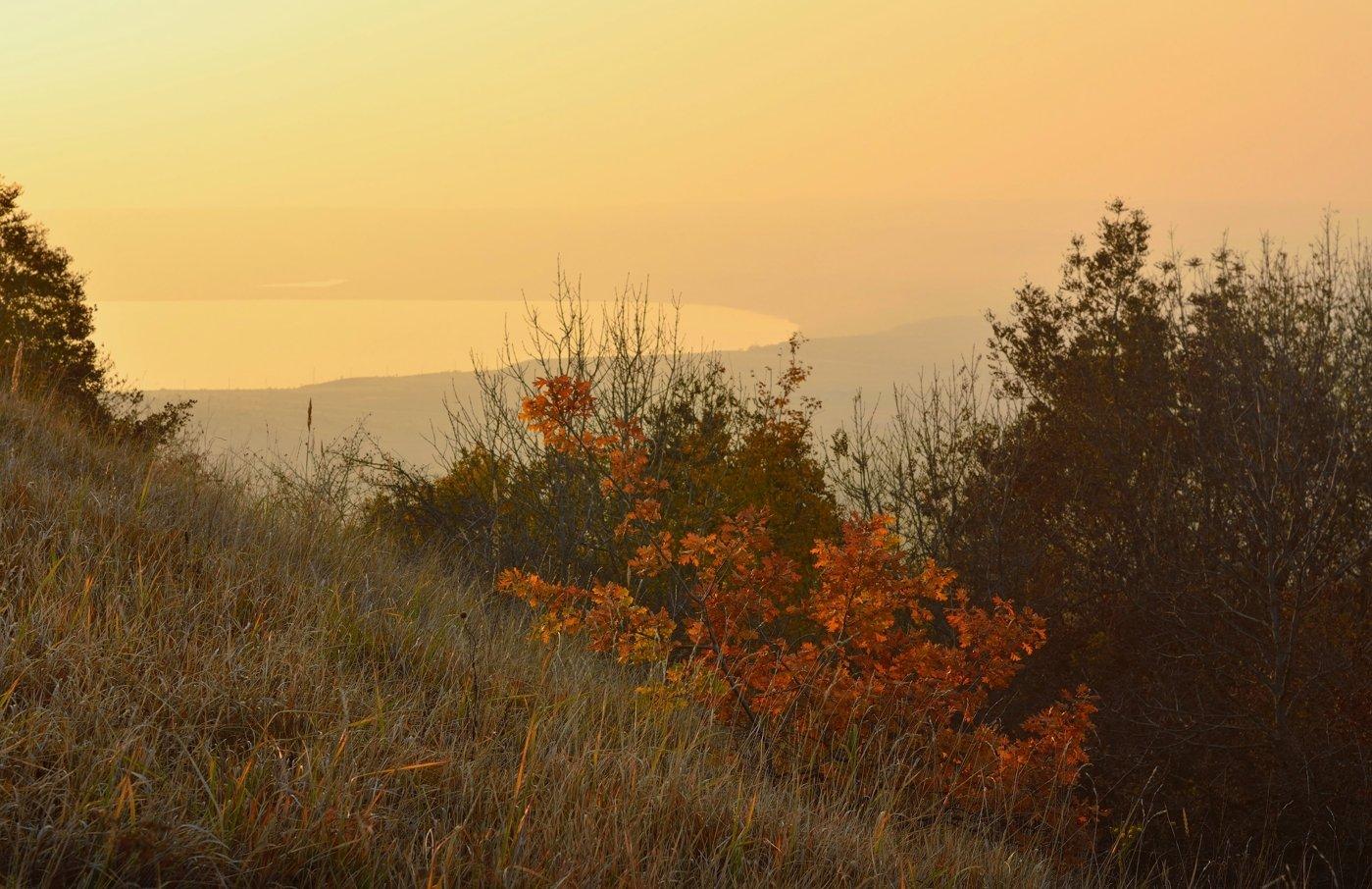 осень закат степь озеро дымка, Александр Жарников