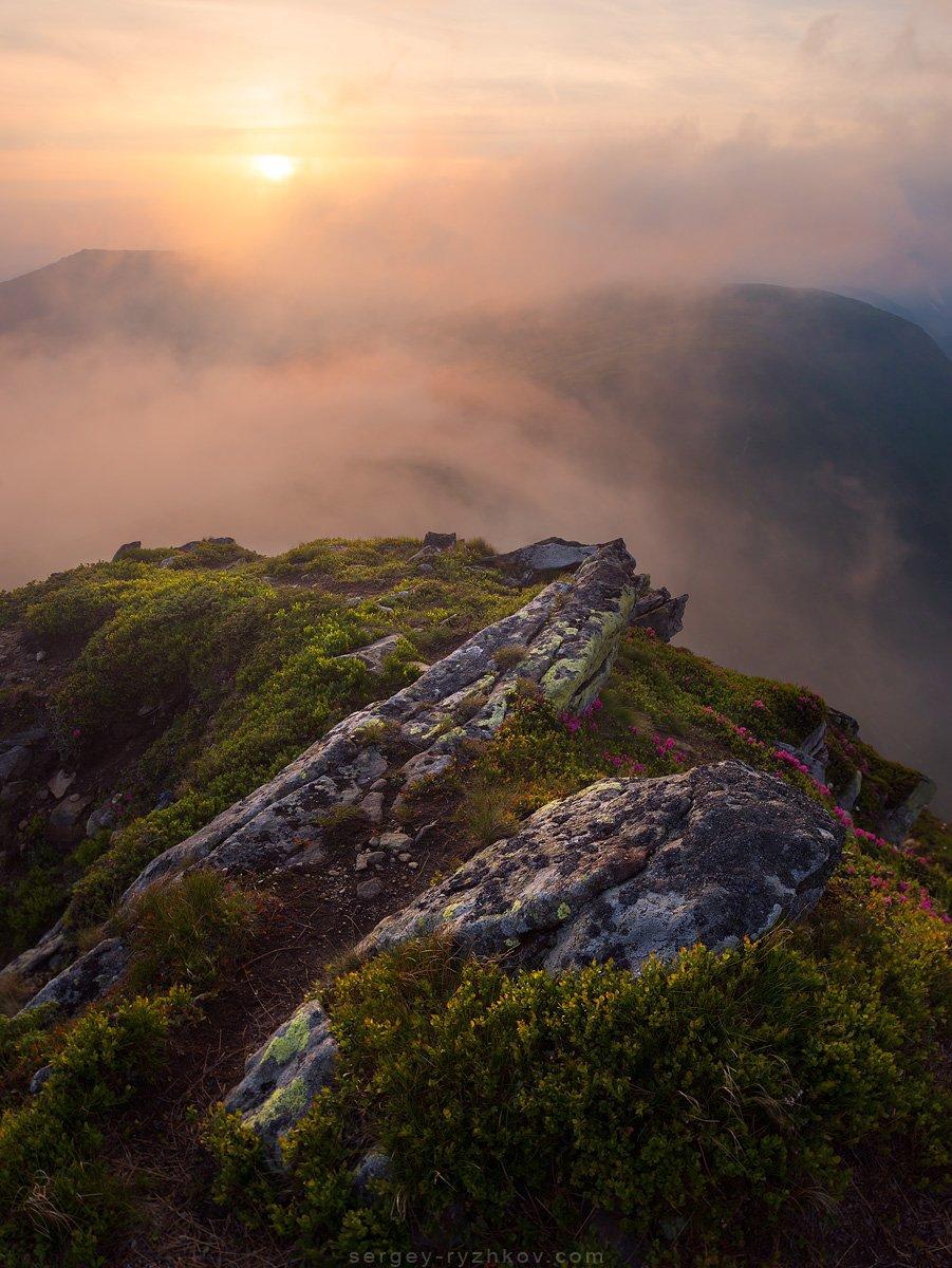 Карпаты, Украина, природа, горы, пейзаж, туман, landscape, nature, carpathians, ukraine, mountains,, Сергей Рыжков