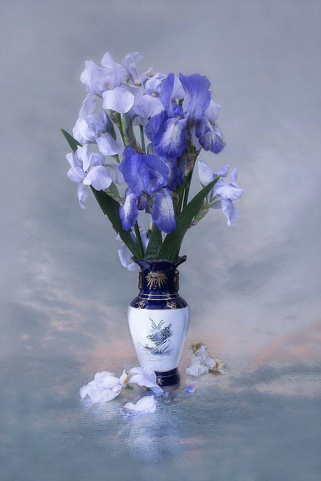 натюрморт, мокрое стекло, цветы, садовые, голубые ирисы, букет, закатное небо, Ирина Приходько