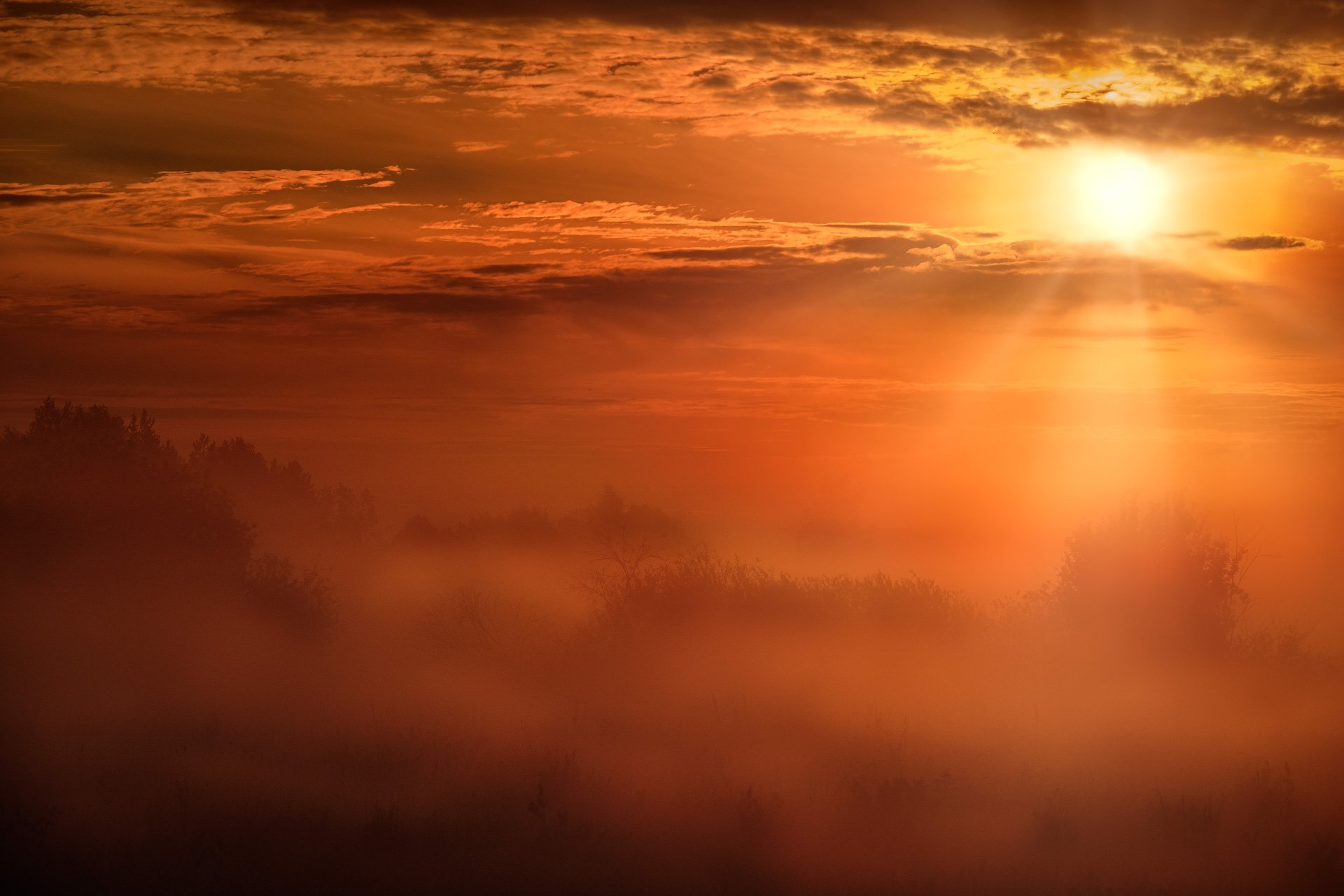 пейзаж, дубна, природа, поле, туман, красный, солнце, утро, рассвет, Андрей Чиж