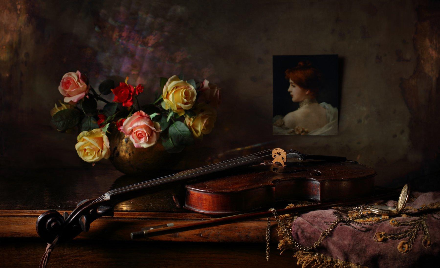 розы, цветы, скрипка, музыка, девушка, портрет, фото, Андрей Морозов