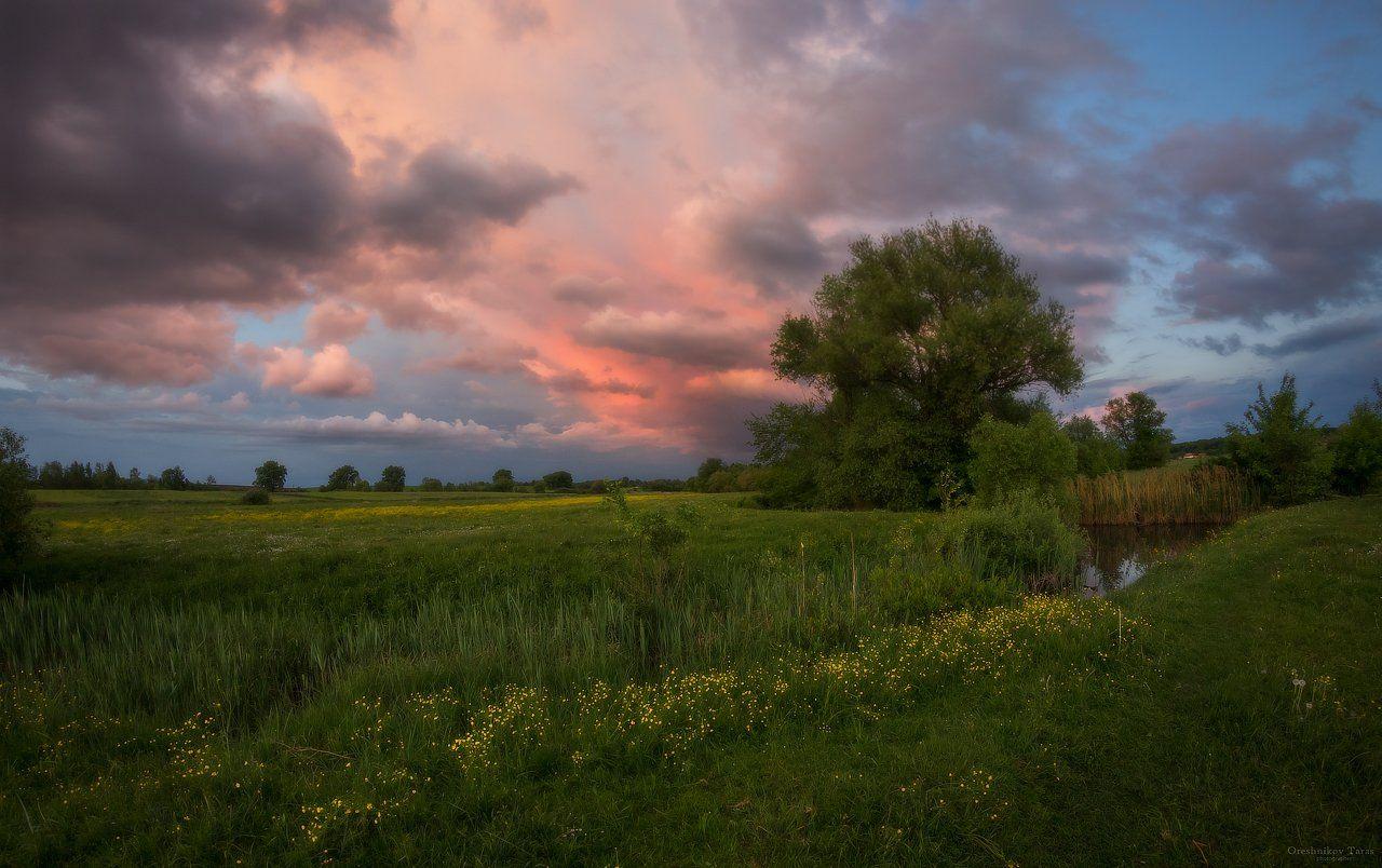 пейзаж,природа,небо,закат,лето,облака,тучи,зарево,луг,рассвет,, Taras