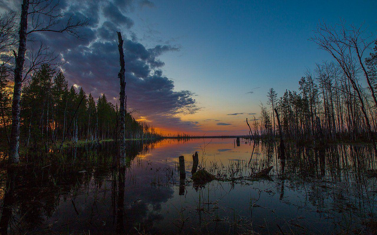 закат,природа,коми,печора, Игорь Триер