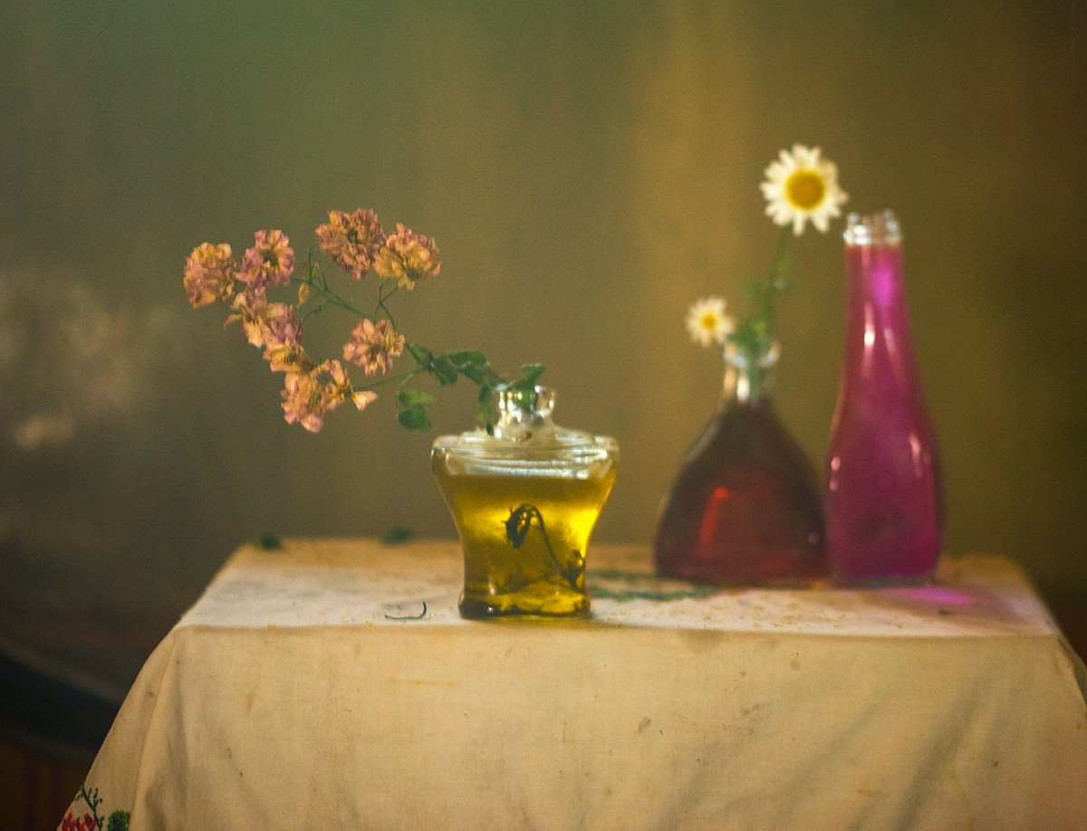 still life,photography,rural,impression,flowers,light, mustafa yagci