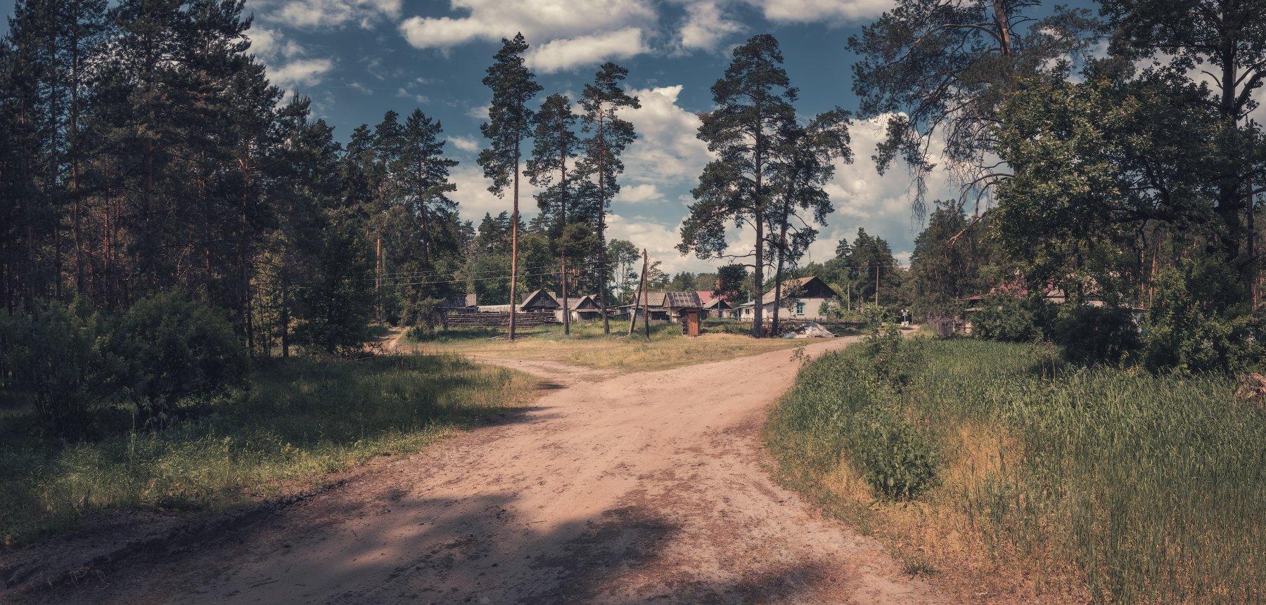панорама, лето, лес, деревня, Андрей Кровлин