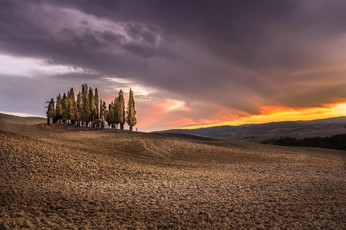 tuscany, Ryszard Lomnicki