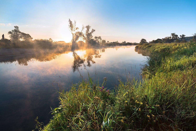 рассвет,туман,утро,солнце,отражения, Соколов Андрей