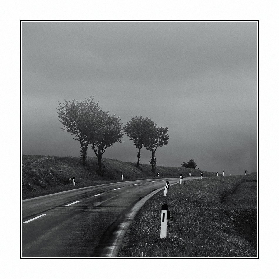 дорога, туман, пейзаж, деревья, Oleg Dmitriev