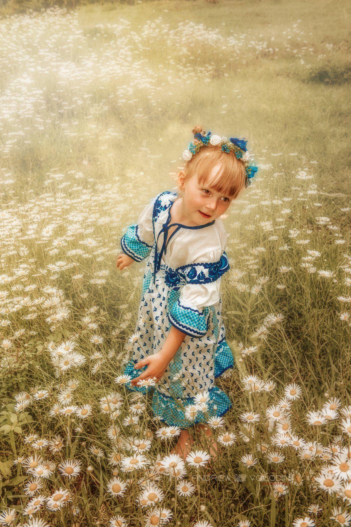 девочка ребенок платье славянка ромашки поле лето солнце, Андрей Володин