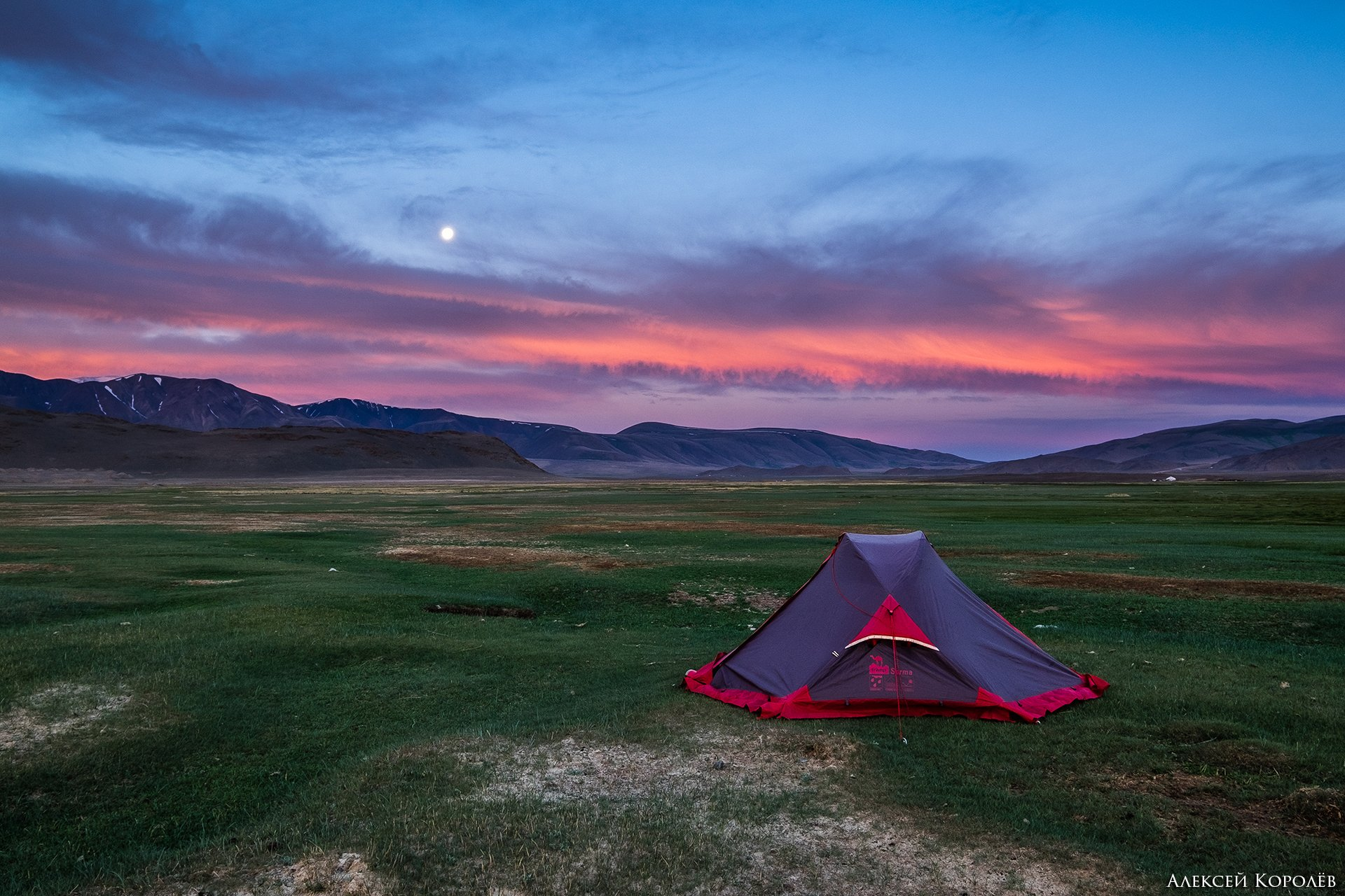 монголия, горы, алтай, рассвет, палатка, луна, природа, пейзаж, лето, mongolia, mountains, altai, dawn, tent, moon, nature, landscape, summer, Алексей Королёв
