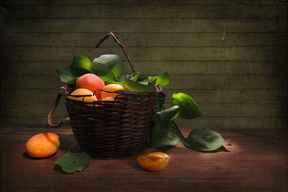 Спелые абрикосы Алла Шевченко
