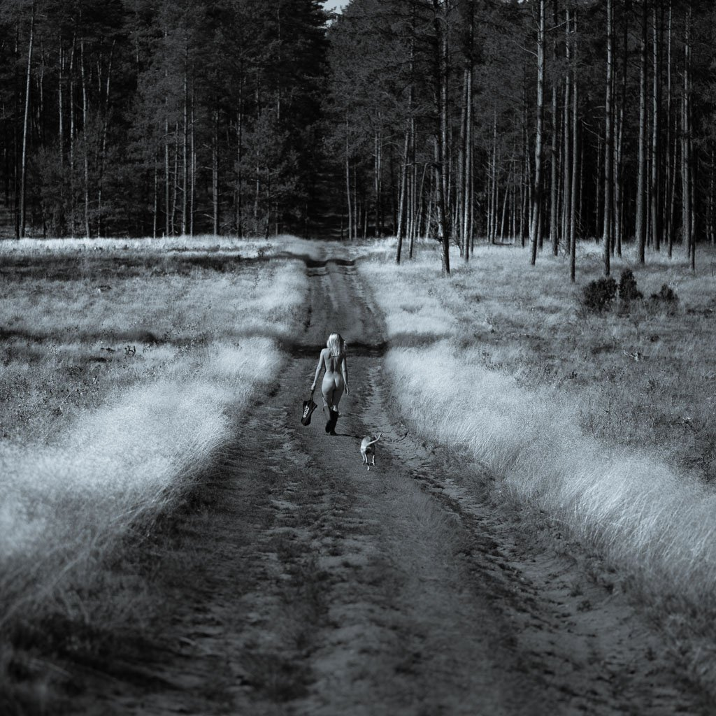 girl, home, nude, funny, way, forest, path, Marcin