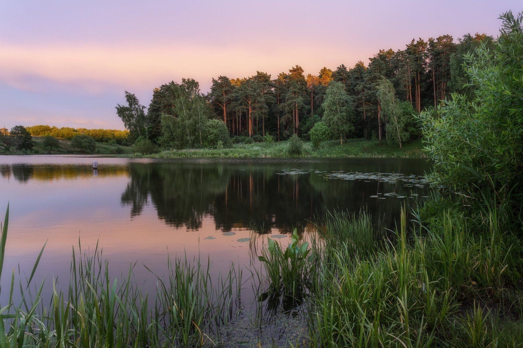 пейзаж, природа, закат, лето, вода, landscape, Мартыненко Дмитрий