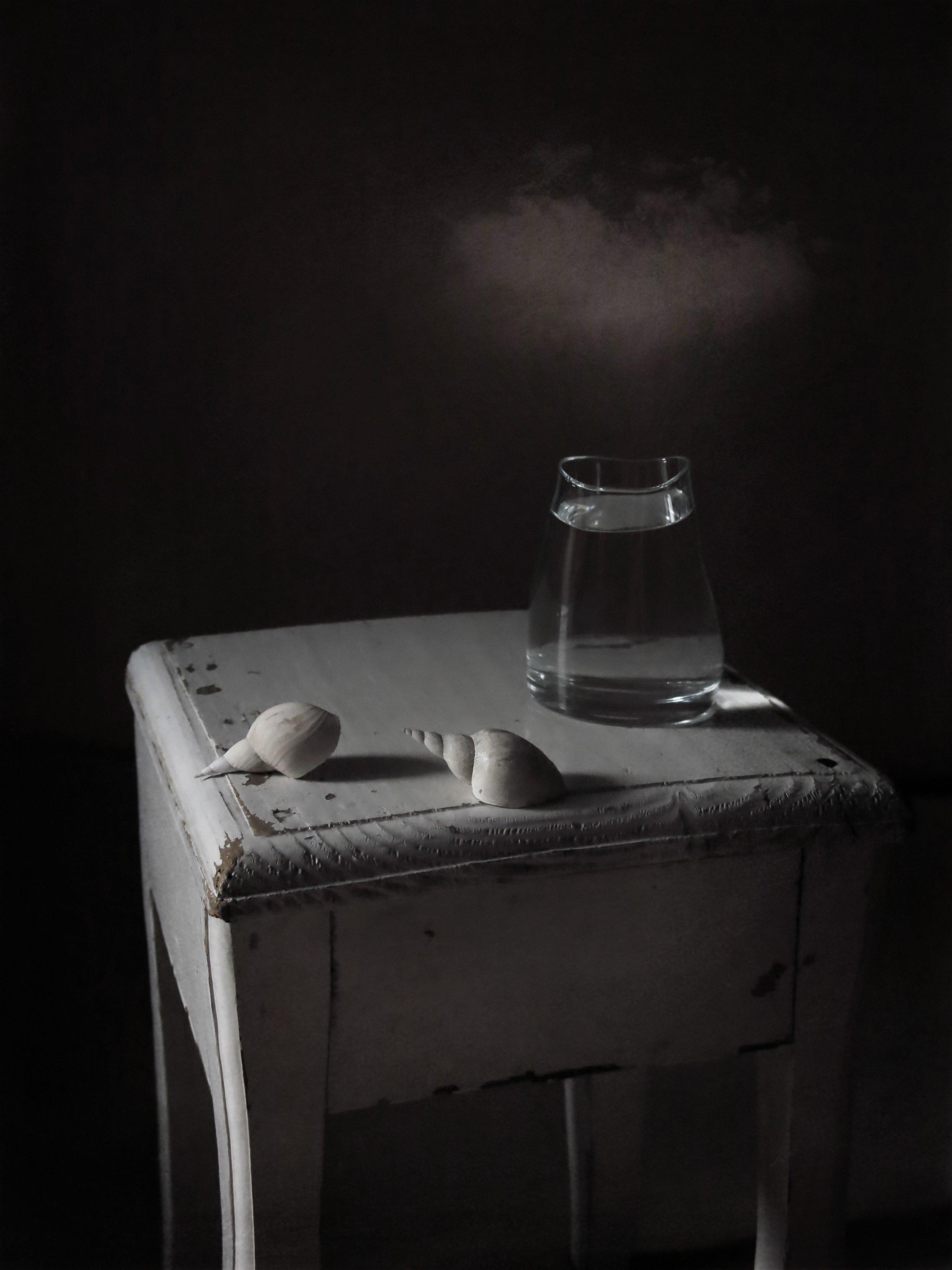 ракушки, вода, натюрморт, Елена Лысенко
