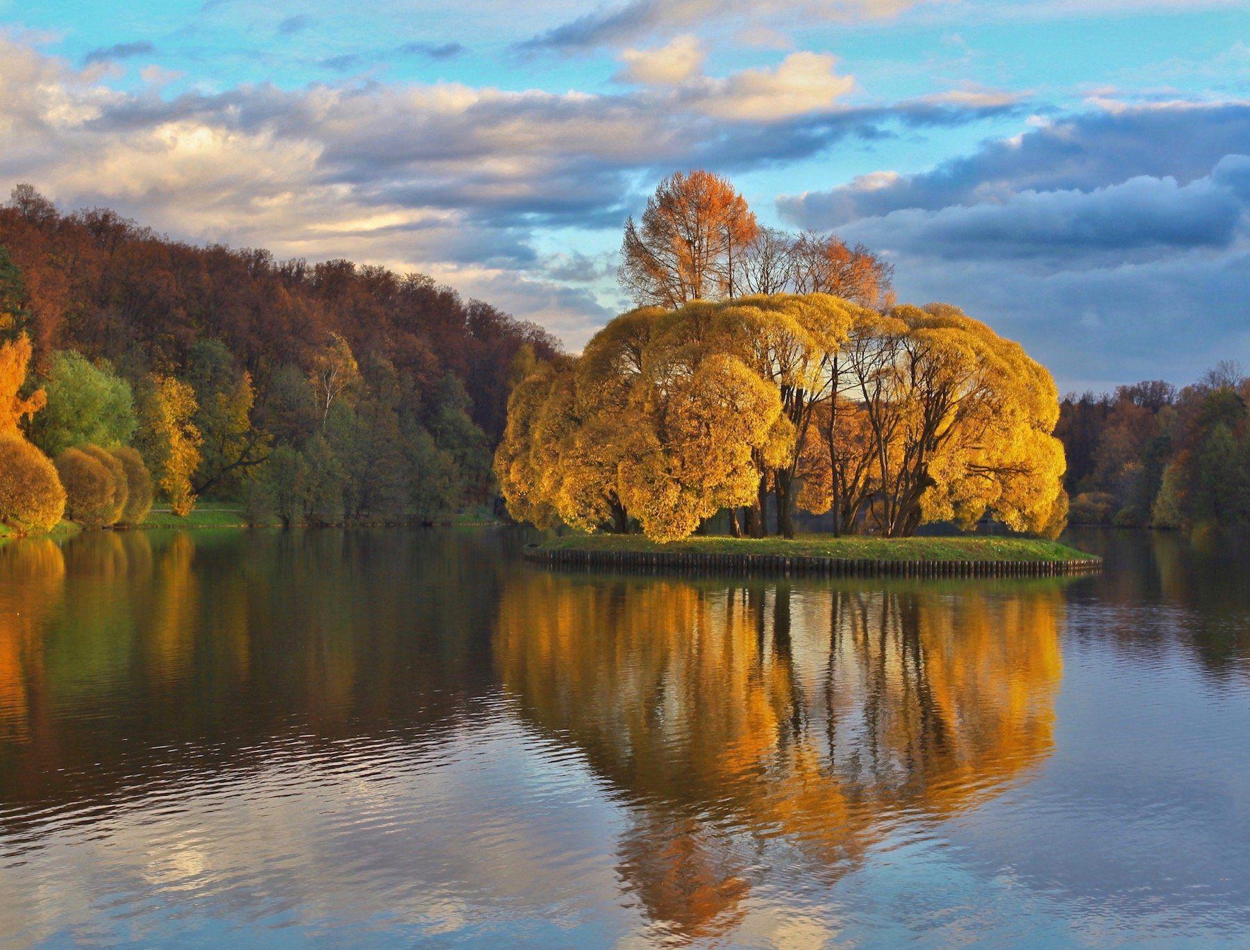 золотая осень, природа, gold autumn, пруд, царицыно, москва, дерево, отражение, reflection, небо, sky, облака, landscape, Julia Kaissa