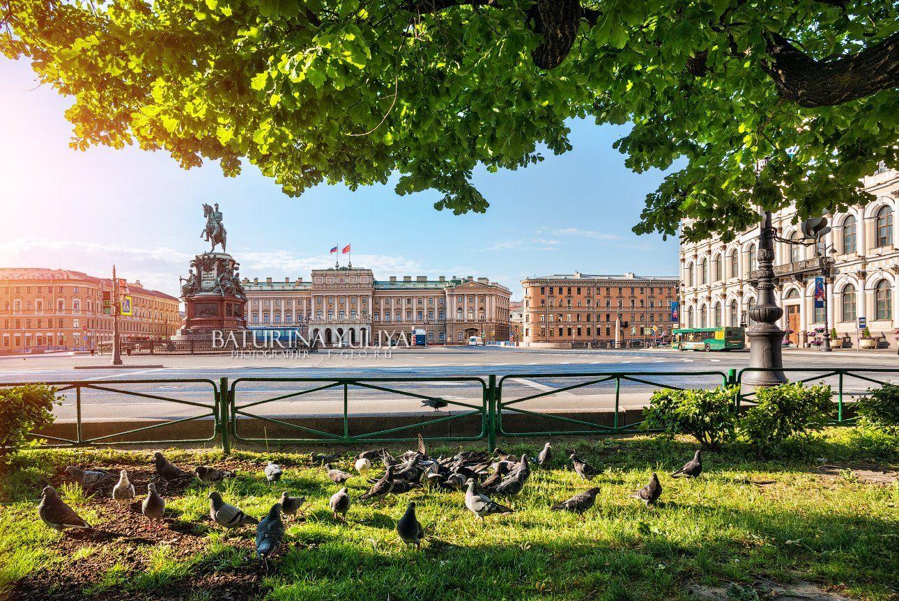 николай первый, санкт-петербург, голуби, площадь, Юлия Батурина