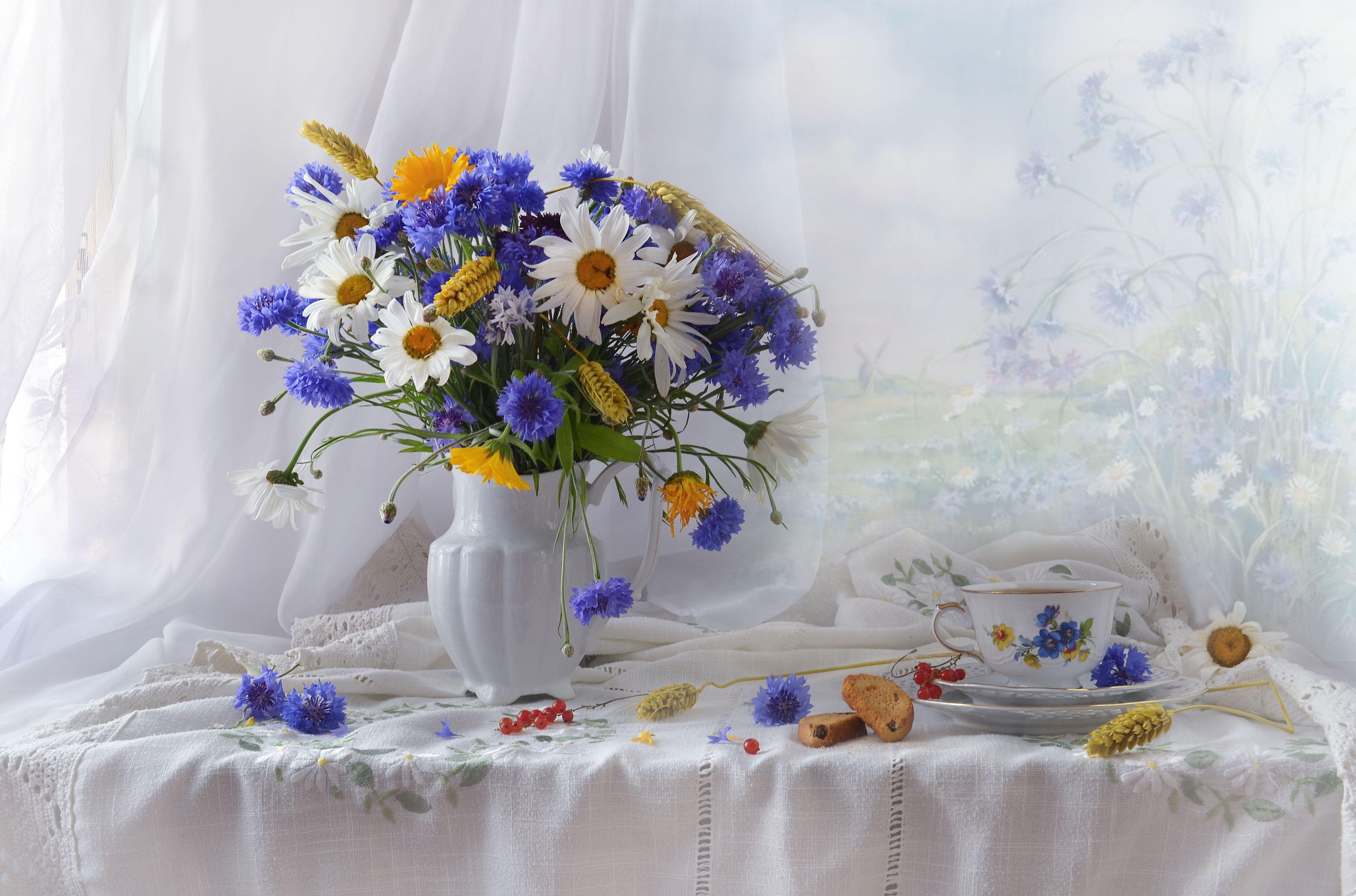 still life,натюрморт, лето, июль, цветы, фото натюрморт, фарфор, ромашки, колоски, васильки, Колова Валентина