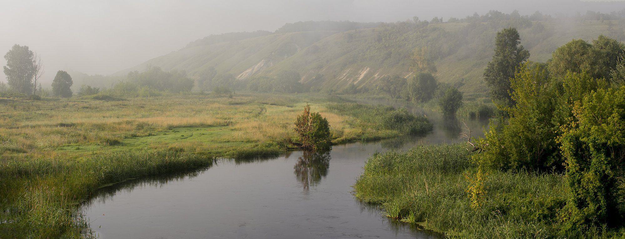 живая природа, Валерий Черняк