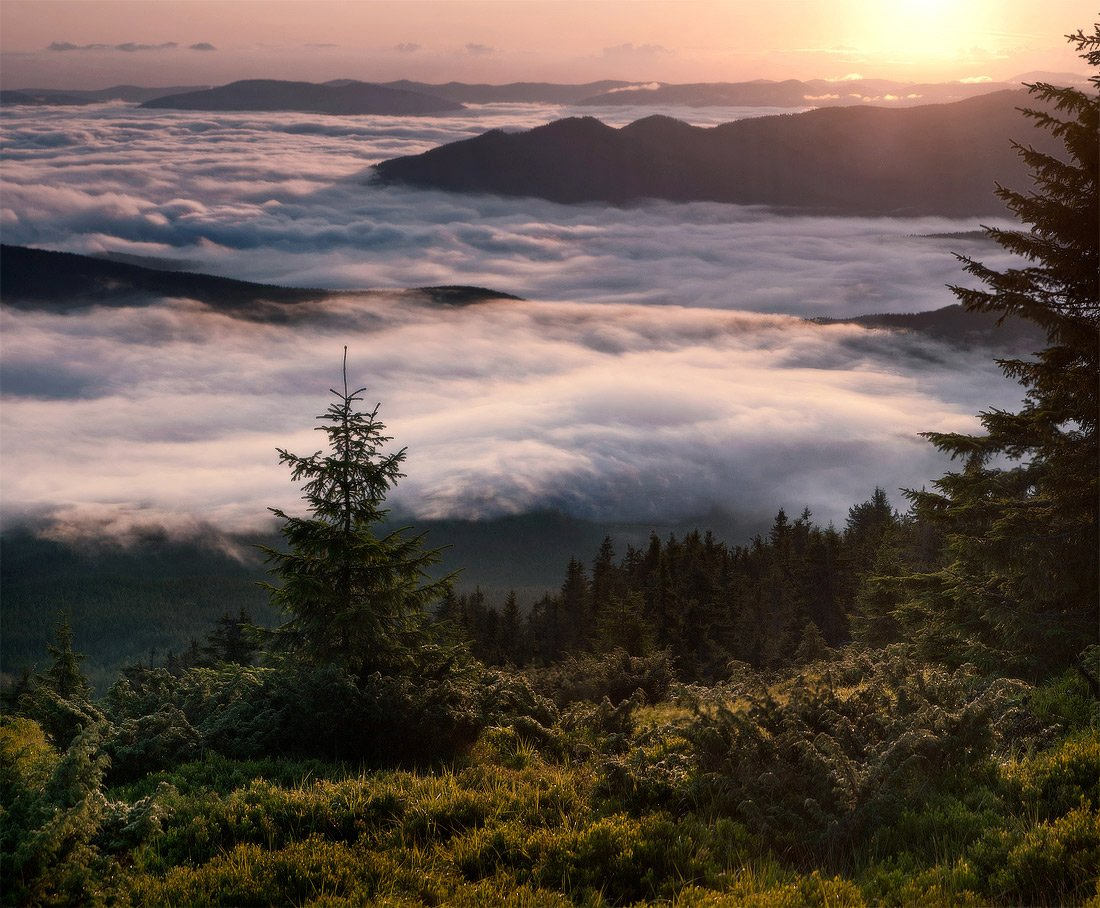 туман, небо, утро, панорама, пейзаж, природа, карпаты, Piligrim