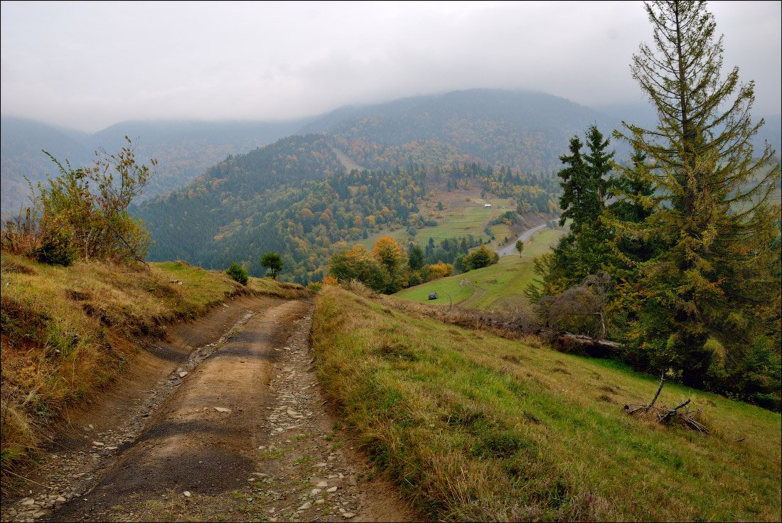 дорога, осень, каменка, карпаты, горы, Dmitry