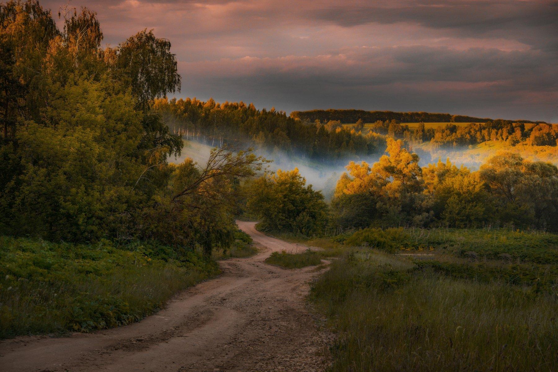 закат, туман, лес, дорога, Екатерина