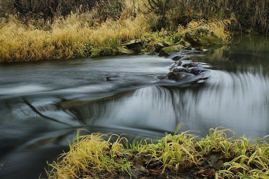 пейзаж, природа, вода, войново, лес, унжа, река, меленки, Сдобин Дмитрий