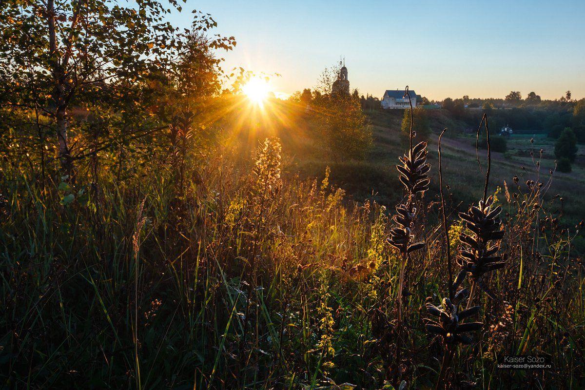 россия, радонеж, поле, травы, люпин, рассвет, силуэт, солнечные лучи, Kaiser Sozo