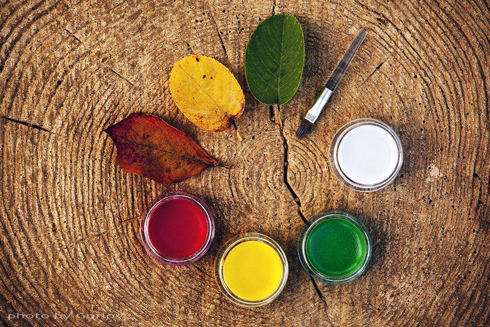 autumn, september, leafs, paint, draw, background, circle, wooden, tree, forest, , листья, осень, палитра, Александр Горлов