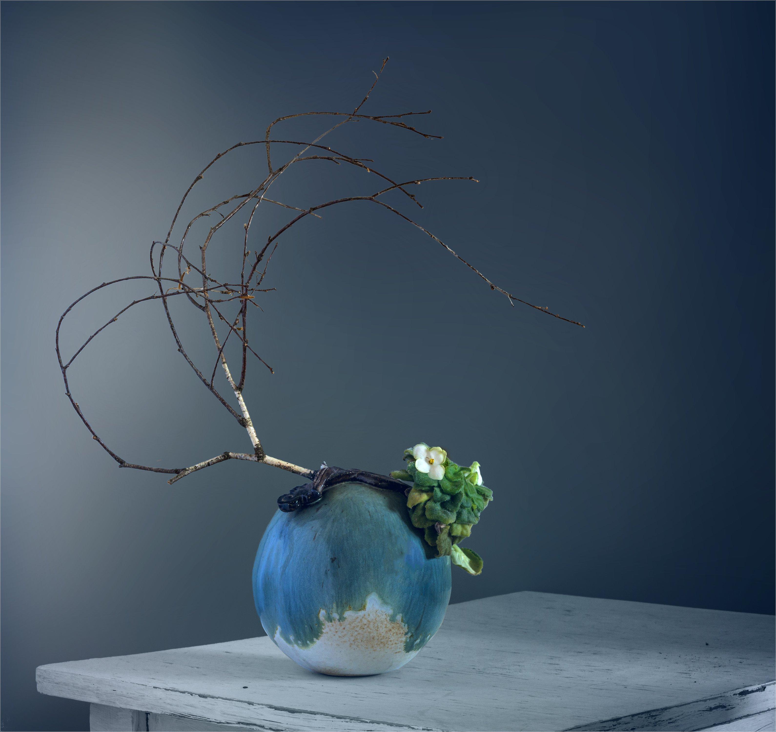 still life, натюрморт,    растение, природа,  винтаж, ретро,  минимализм, ветка, береза, цветы, фиалки,, Михаил MSH