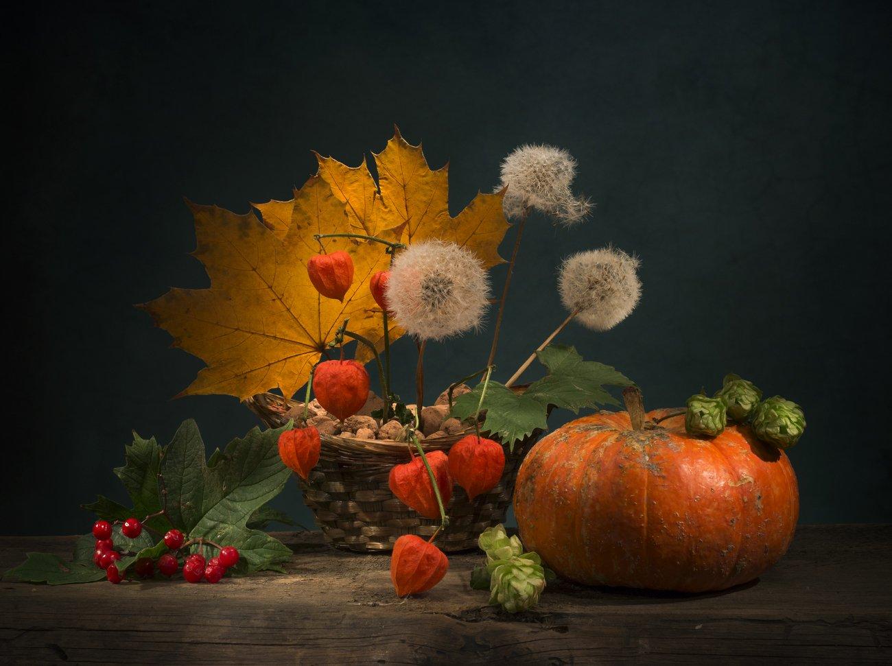 листья,одуванчики,калина,натюрморт,осень,физалисы,тыква, Елена Брежицкая