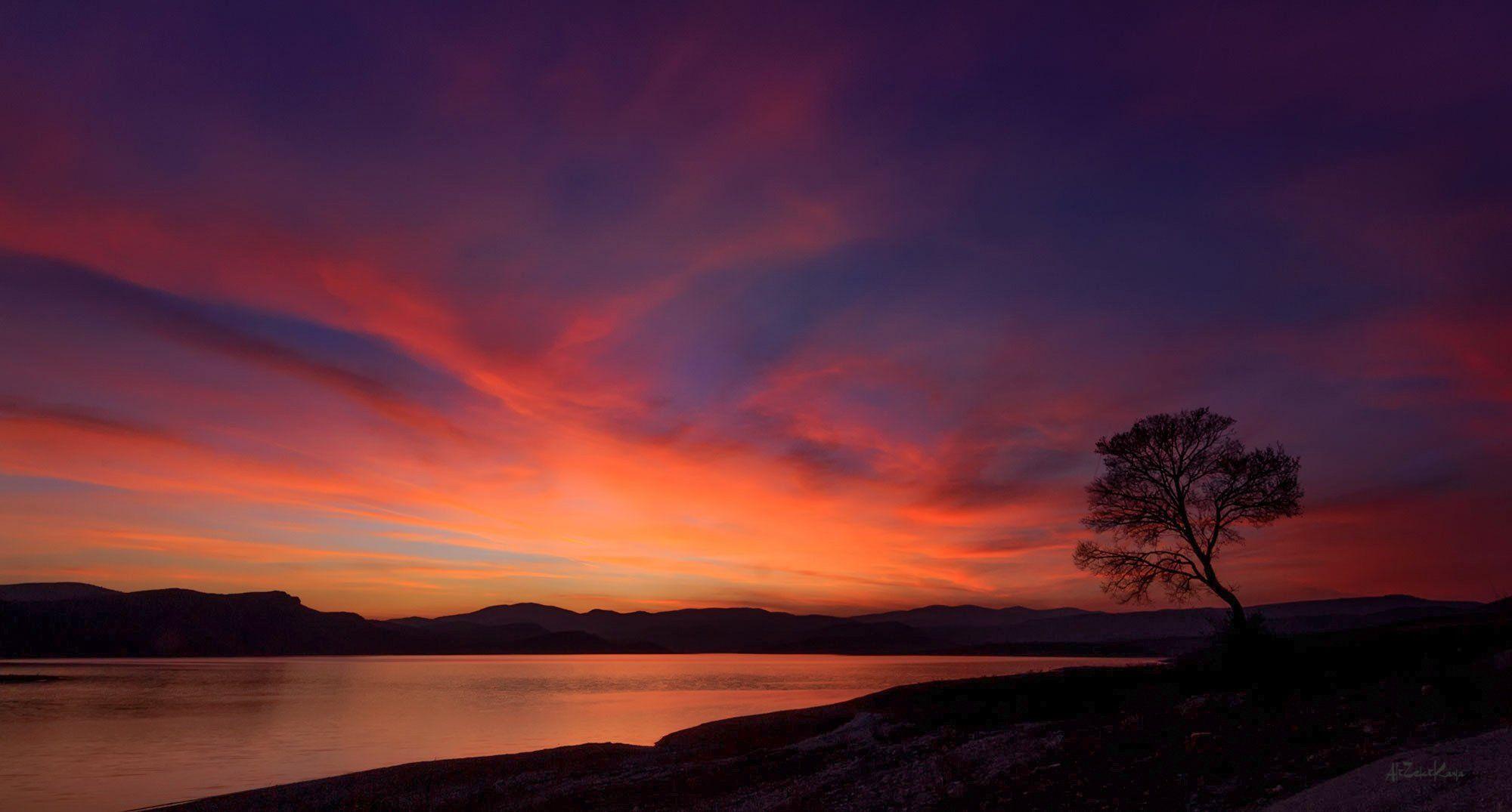 sunset ankara turkey landscape canon tree alone, Ali Zeki Kaya