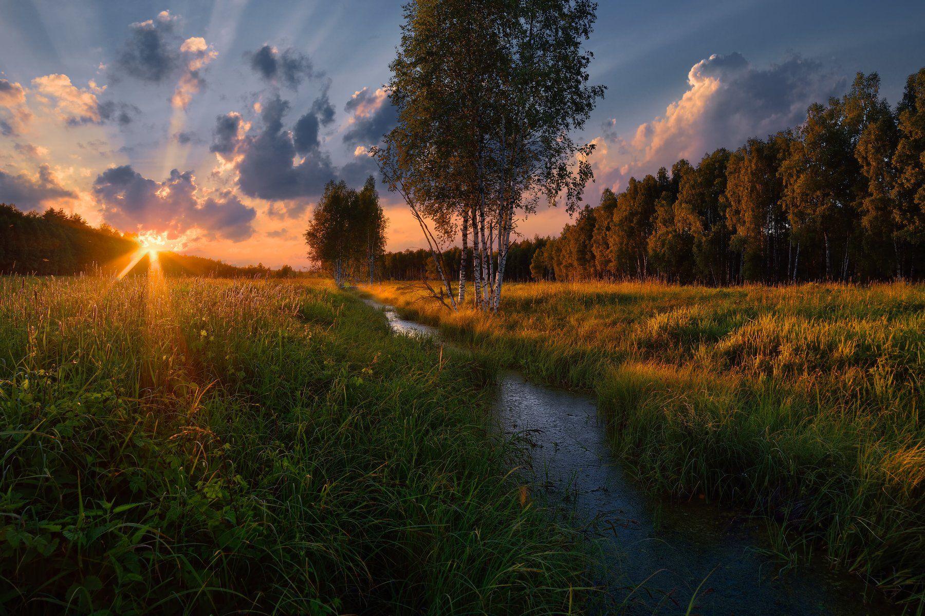лето,вечер,закат,река,лес,солнце,небо,облака, Виталий Полуэктов