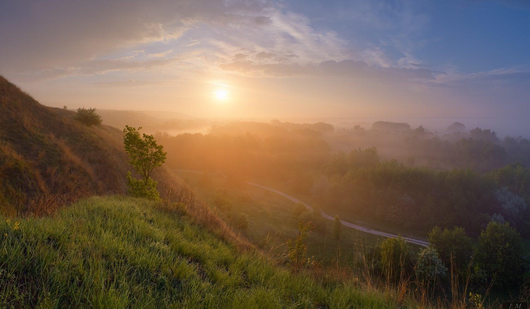 утро, рассвет, солнце, туман, весна, холмы, долина, панорама, свет, золотой, пейзаж, облака, morning, fog, light, colors, golden, sun, misty, valley, grass, hills, foggy, spring, sunrise, landscape, panorama, sunlight, countryroad, clouds, Ivan Maljarenko
