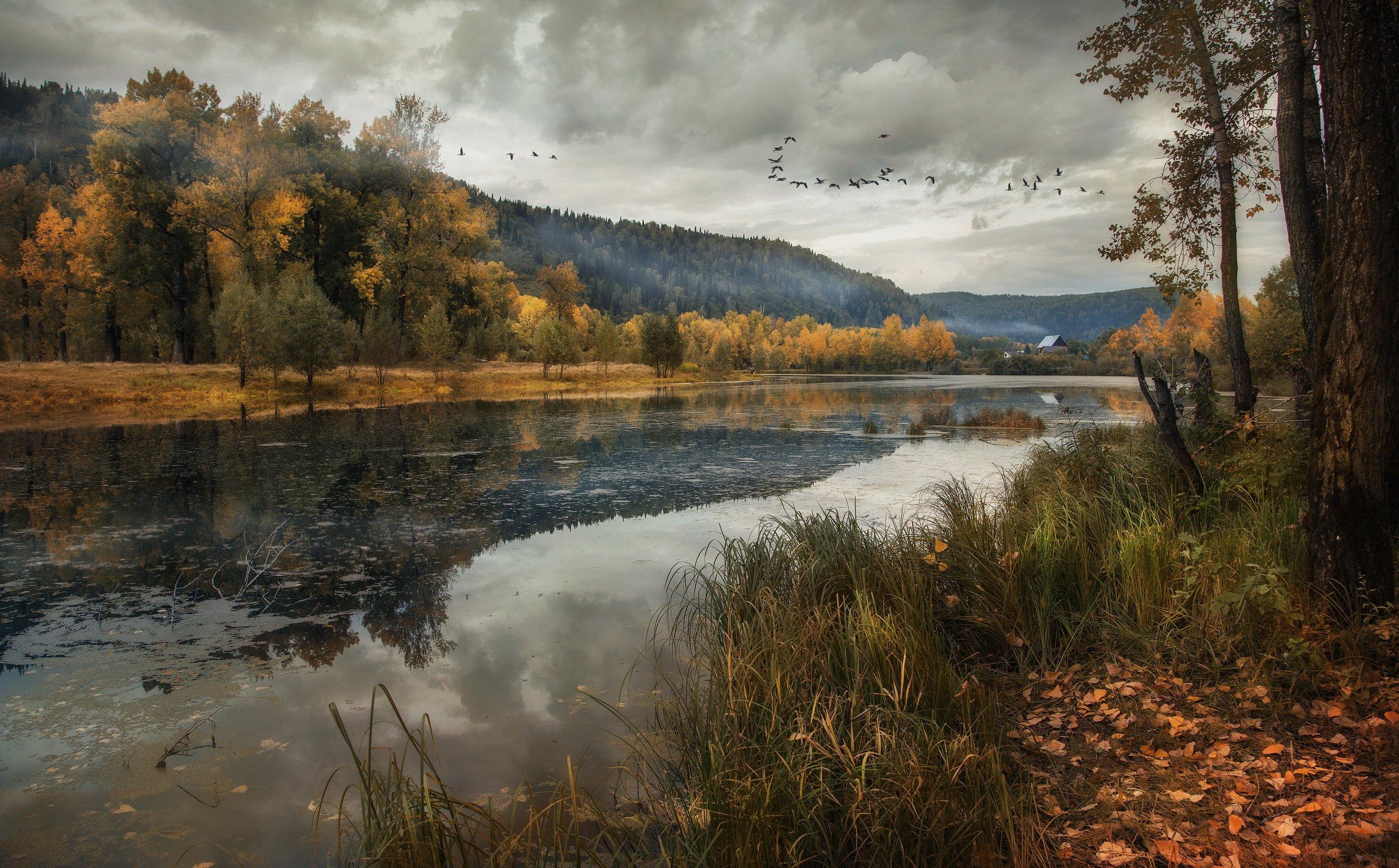 осень, пейзаж, золото листьев, природа, улус, Художников Павел