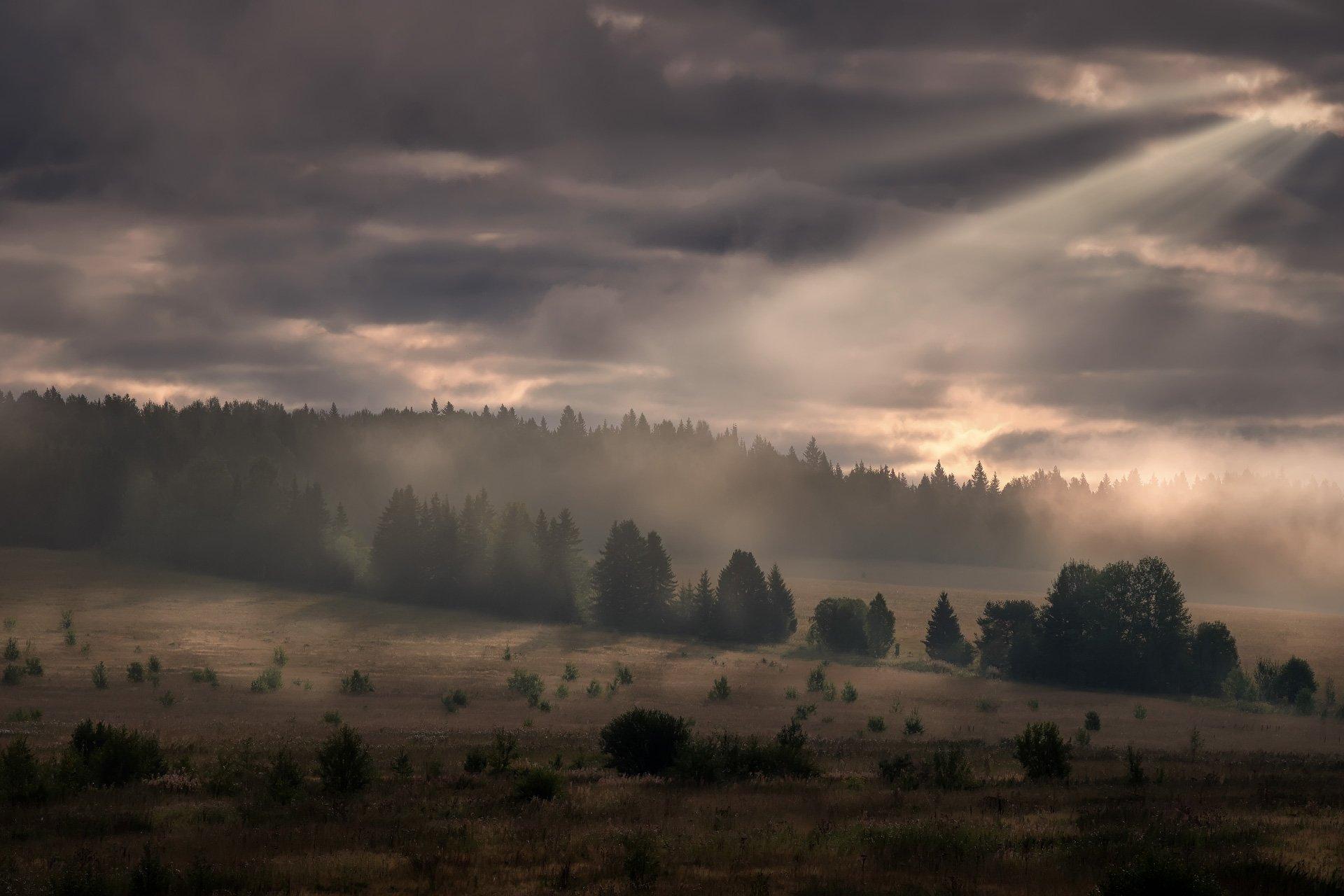пейзаж, перемское, пермский край, утро, облачно, луч, солнце, тайга, лес, елки, поле, Андрей Чиж