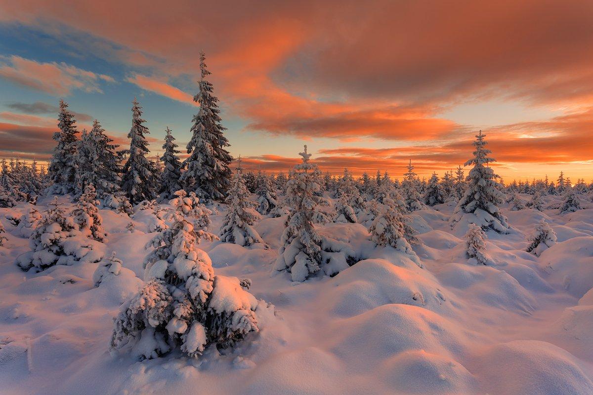 landscape,canon,sunrise,winter, Iza i Darek Mitręga