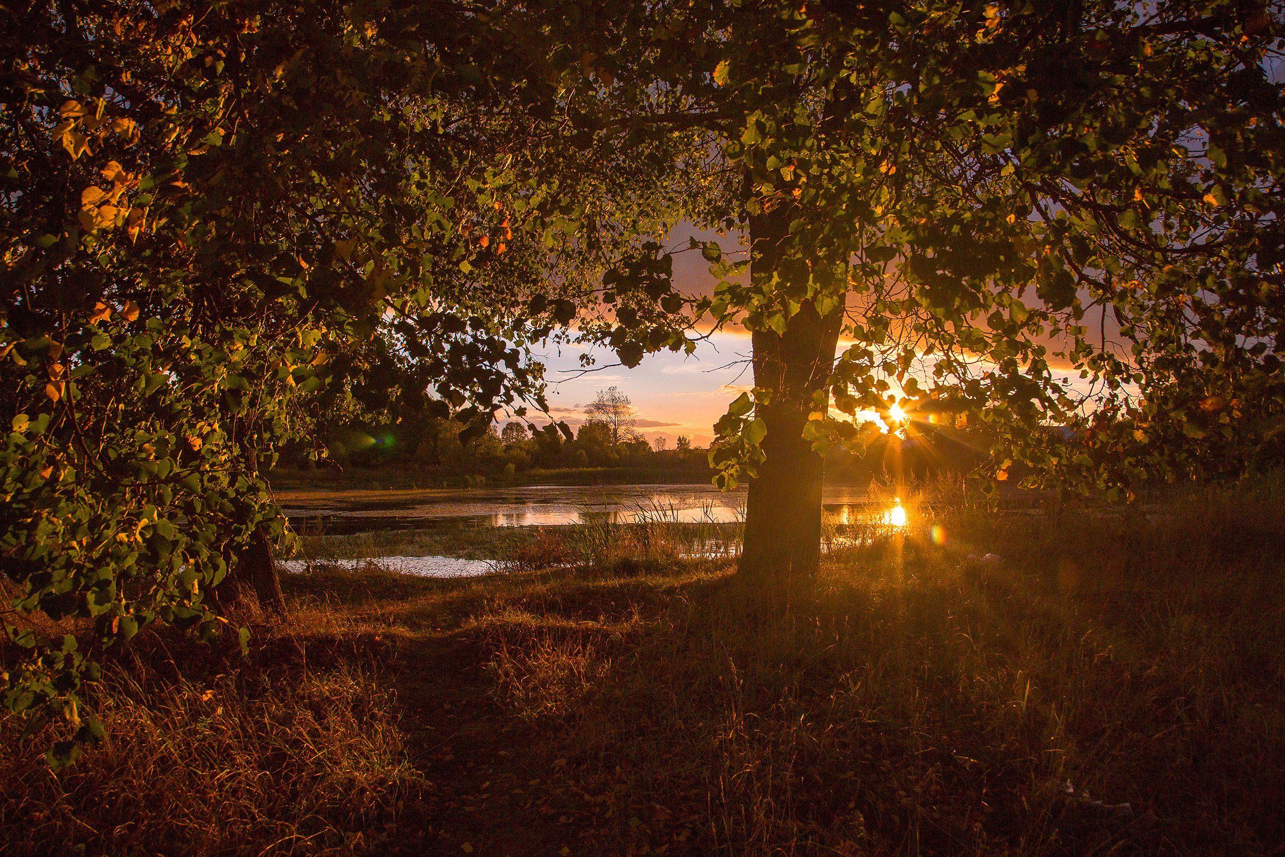 Россия, закат, Лежнево, Иваново, Ивановская область, пейзаж, природа, пруд, Воробьёв Евгений