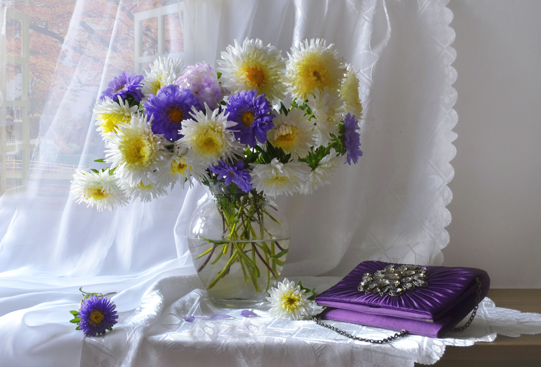 still life,натюрморт,осень, сентябрь, фото натюрморт, астры, цветы, солнечный день, бабье лето, настроение,, Колова Валентина
