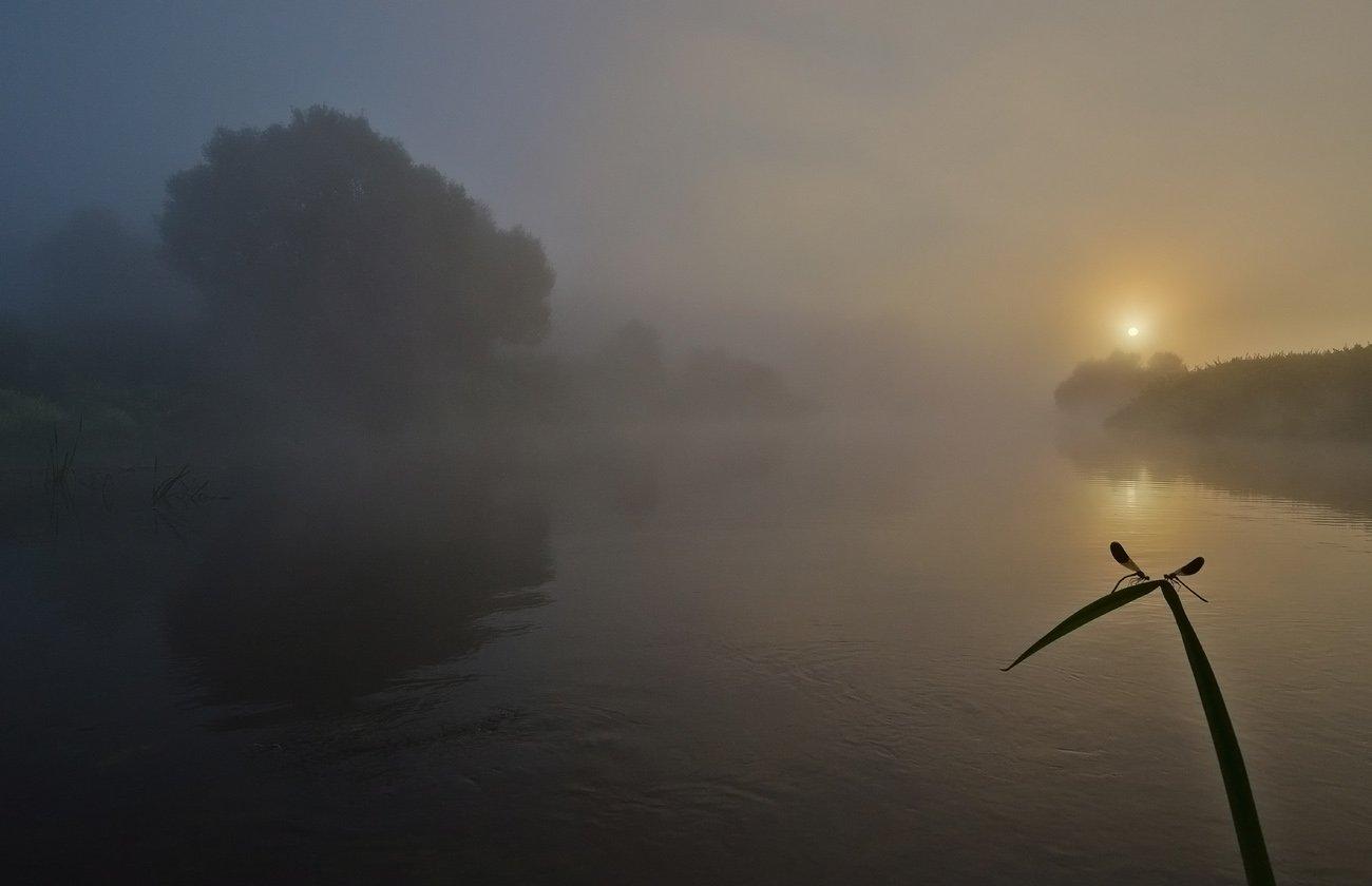 утро, рассвет, река, упа, якшино, пейзаж, природа, Михаил Агеев