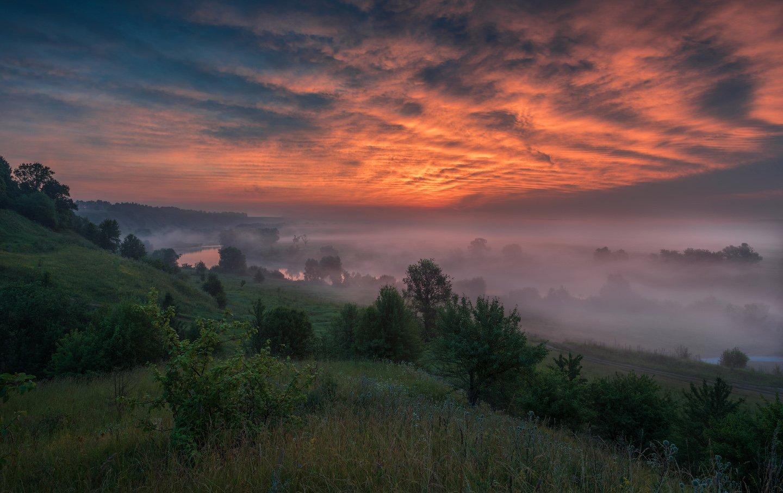 утро, рассвет, природа, туман, река,, Виталий Левыкин