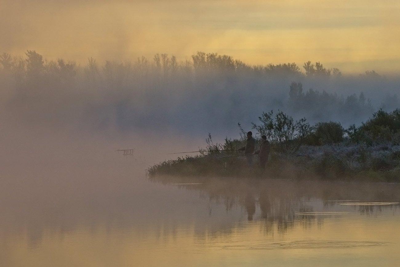 утро, рыбалка, туман, природа, архангельское, Михаил Агеев