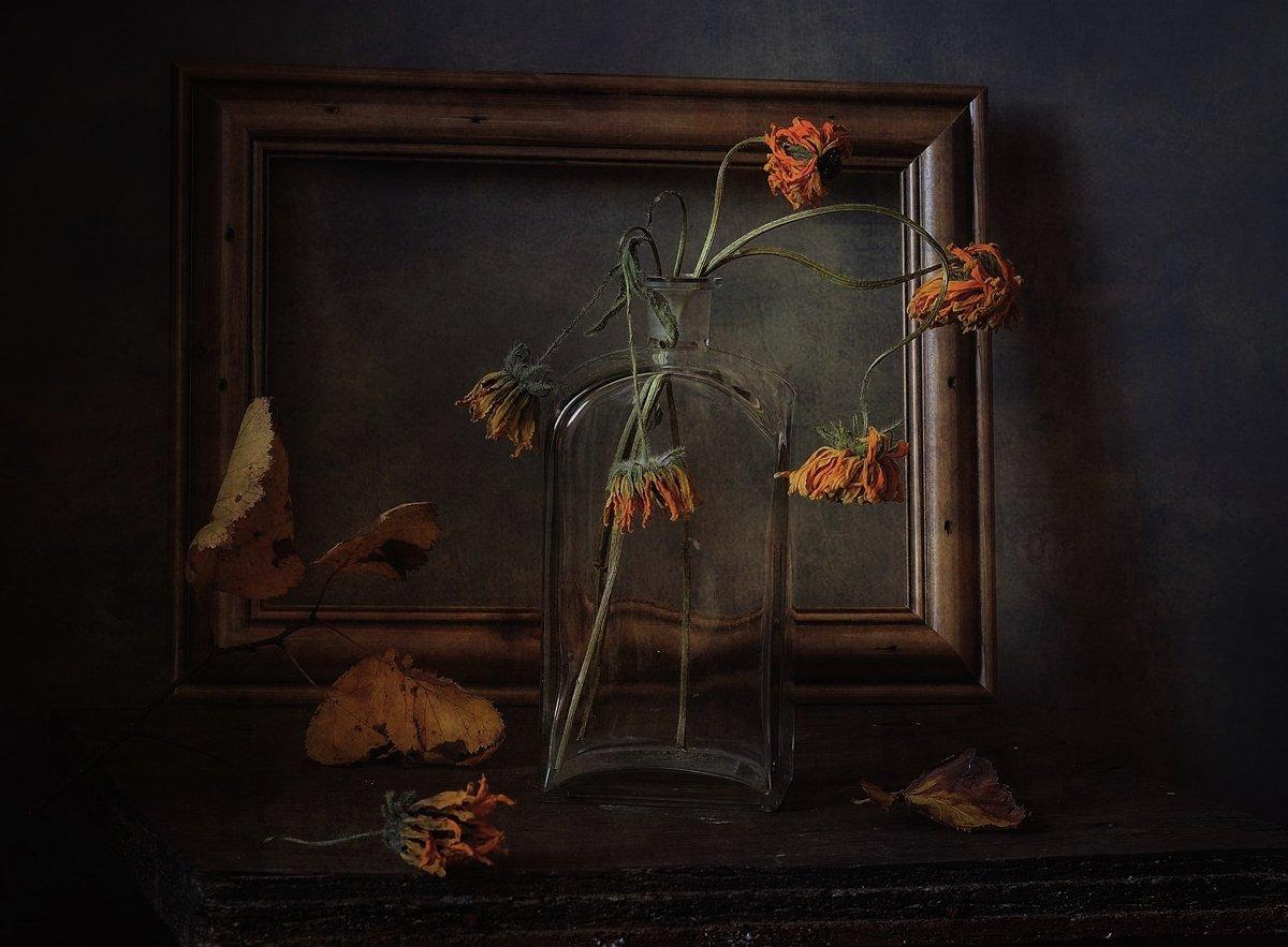 натюрморт,осень,увядание, Наталия К