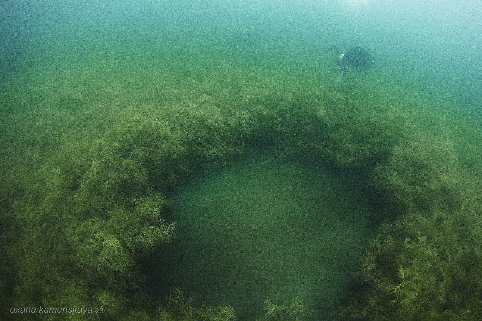 underwater wreck diver mine rummu, Оксана Каменская