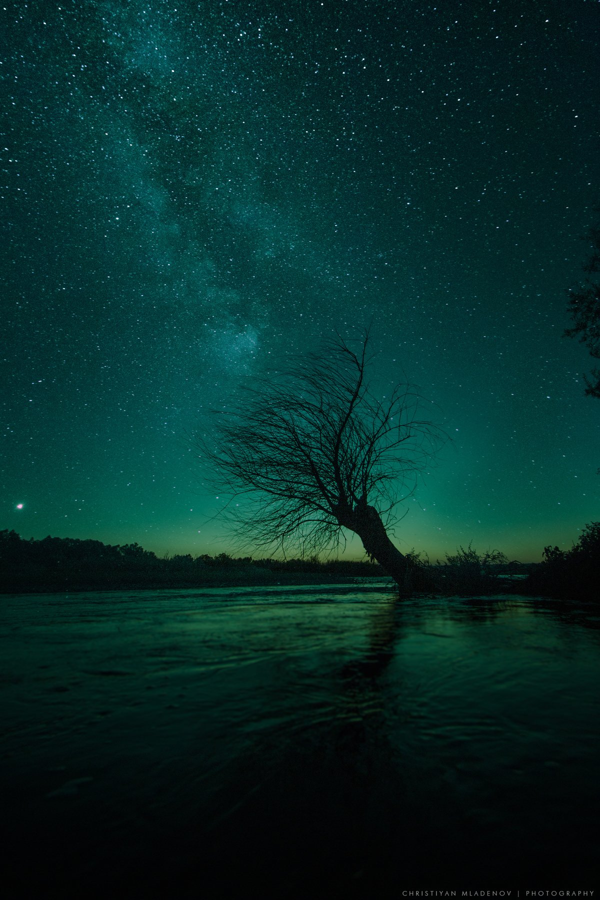 night. astrophotography, astronomy, tree, cosmos, lonely, nightscape, river, milky way, galaxy, milkyway, space, stars, sky, bulgaria, nature, light, long exposure, vertical, astroscape, Кристиян Младенов