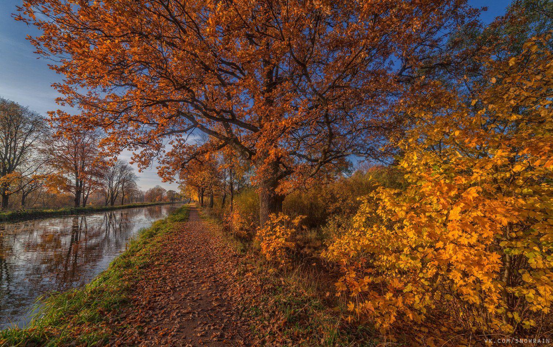 пейзаж, природа, путешествия, travel, wildlife, nature, landscape, canon, осень, autumn, colours, Snowrain