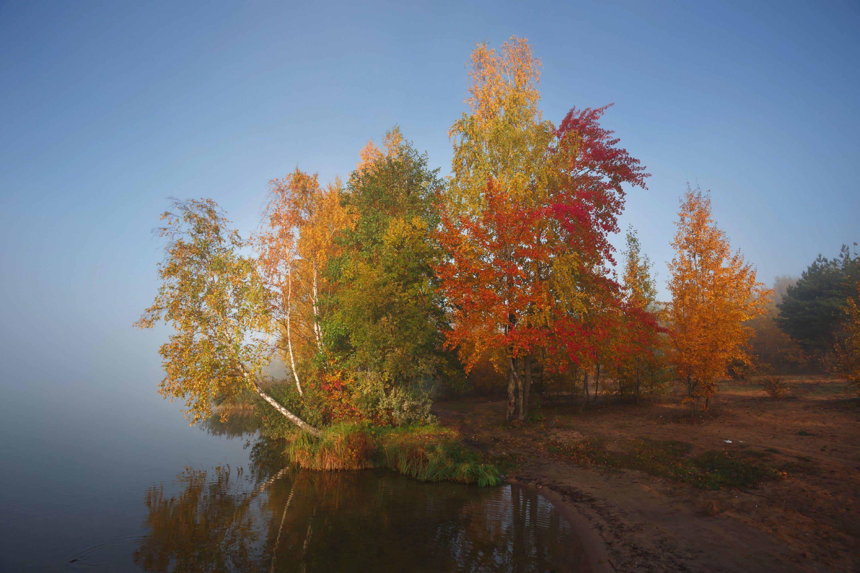 утро, осень, рассвет, дрозды, краски осени, минск, беларусь, Andrey Kozlov